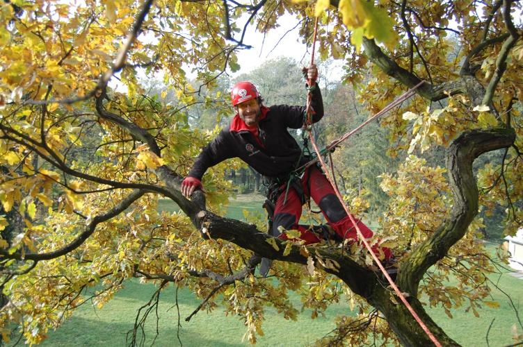 orezstromu.cz - Práce větvích, podzim