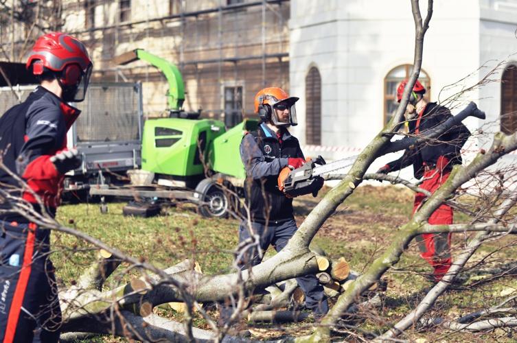 orezstromu.cz - Likvidace dřevního odpadu a štěpkování