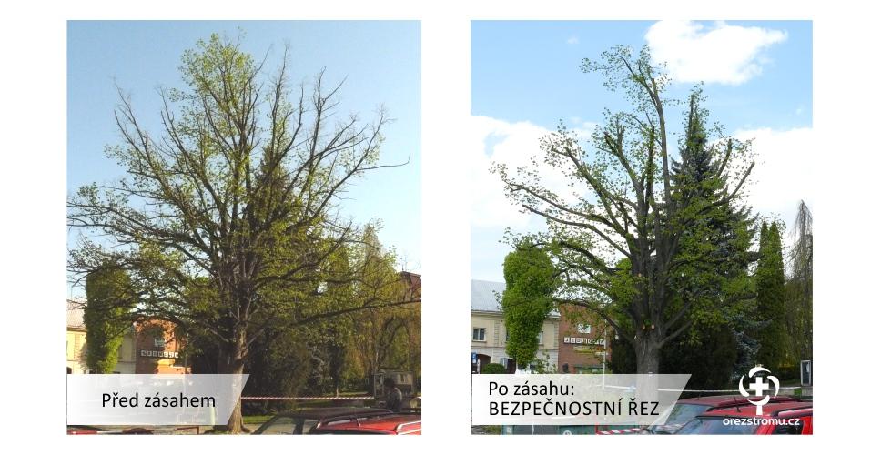 orezstromu.cz -  orezstromu.cz - Bezpečnostní řez před/po zásahu
